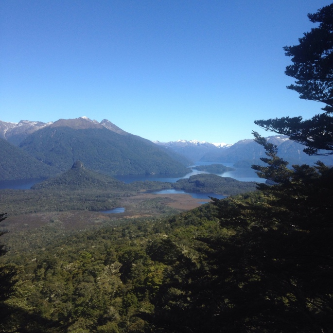 The view from the top of the Lake Manapouri Circle Track