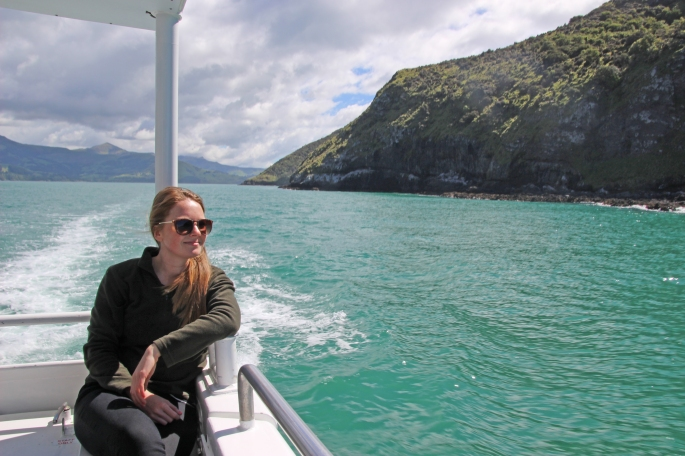 A boat ride around the harbour of Akaroa